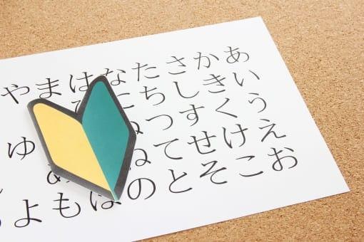 国内映画の特徴①言語が日本語